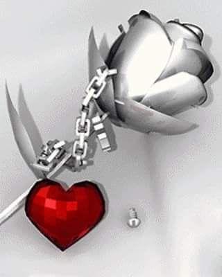 FB_IMG_1524693547322.jpg